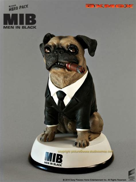 mib pug in black pug frank