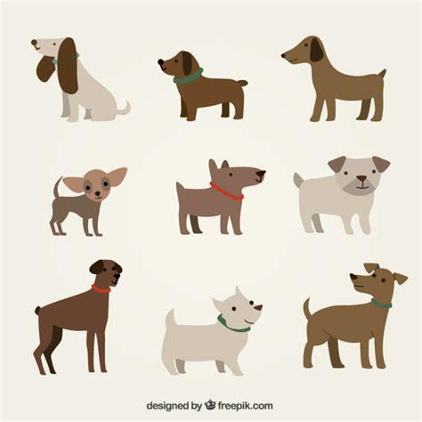 cute dogs illustration vector