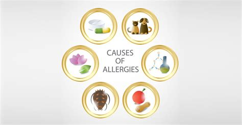 Stool Testing For Food Allergies by Allergy Testing Brighton Hove The Medicine