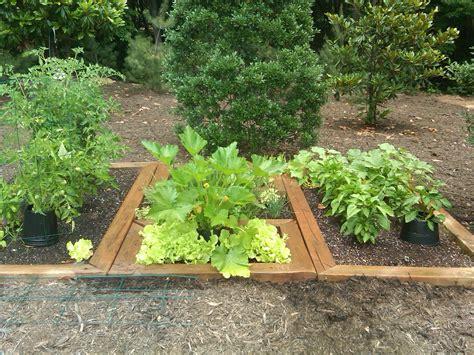 Herb And Vegetable Garden Ideas Herb Gardening For Beginners Light Network