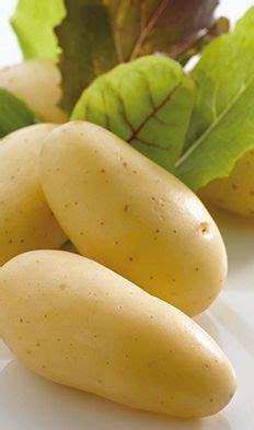 cuisiner les pommes de terre de noirmoutier 1000 images about la noirmoutier on