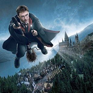 All Comments On Harry Potter Owned A Snow Owl This Is A - builders harry potter studio pocket 163 8m daily