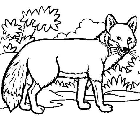 imagenes de un zorro para dibujar faciles dibujo de zorro para colorear dibujos net