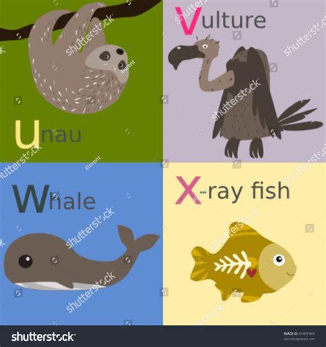animal alphabet stock vector animal alphabet stock vector 61492945