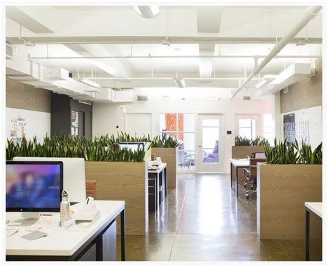 Interior Design Startup by 572 Best Images About Office Plants Desk Mates On The Office Office Plants And
