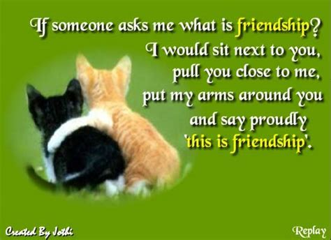 This Is Friendship! Free Best Friends eCards, Greeting