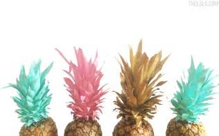 Research Paper On Pineapple by Yaaaas 9 Lala Exclusive Downloadable Desktops The Lala