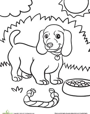 weiner dog coloring page weiner dog puppy worksheet education com