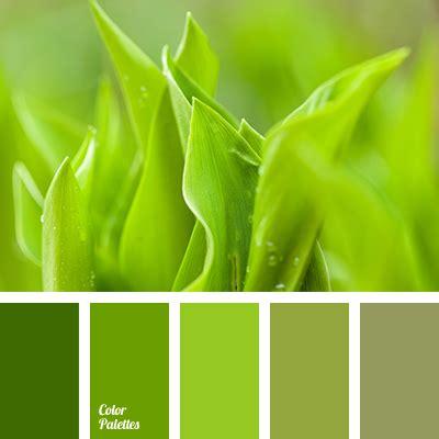 Green Paint Color Palette