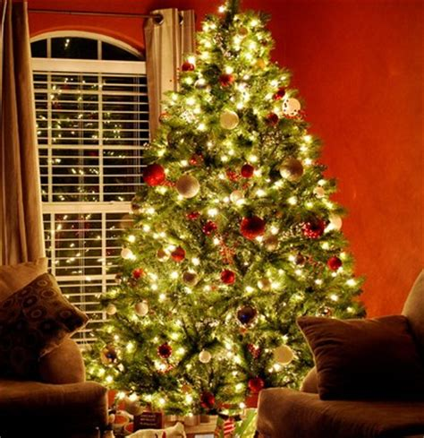 how many lights does a 6 foot christmas tree need how many lights for trees 1000bulbs