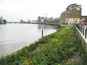 thames river tide times river thames tidal planting zone along 169 nigel cox cc