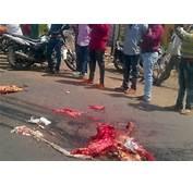 Masiaka Highway Will Make You Fatal Car Crash Photos Graphic