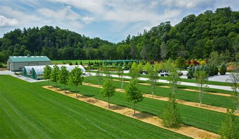 landscapers nc greenleaf services landscape company in linville nc