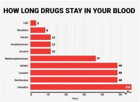 What Is It When Blood Is In Your Stool by See How Much Time Each Type Of Stays In Your