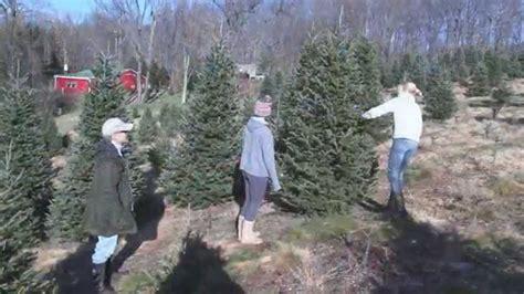beezup christmas tree farm clarks summit pa youtube