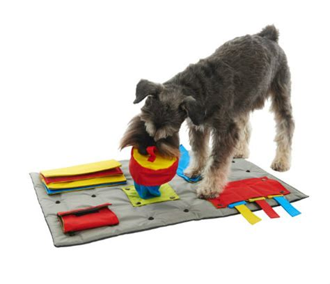 Mat For Dogs by The Buster Activitymat Is A Problem Solving Interactive