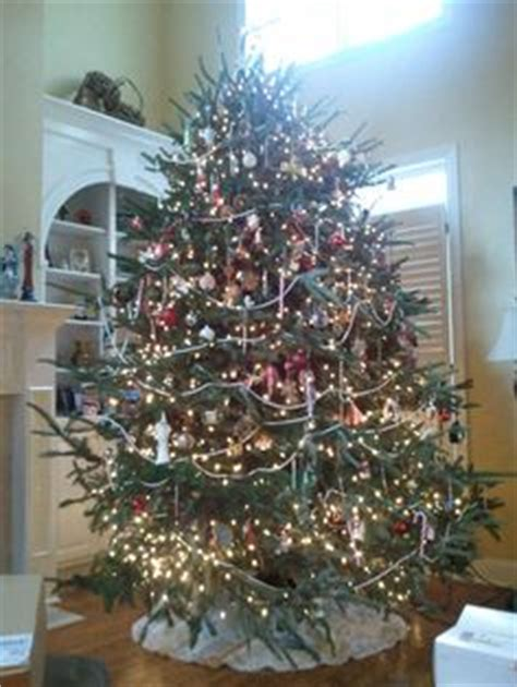 1000 images about old fashioned christmas trees on