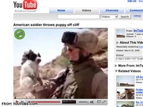 marine throws puppy puppy throwing marine is removed from corps cnn