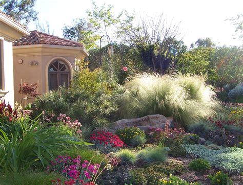 Portfolio Drought Tolerant Garden Design