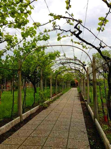 Bien Tonnelle En Bois Pour Jardin #1: pergolato-3.jpg