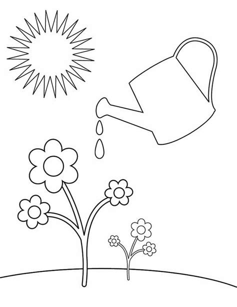 8 images of watering plants coloring pages watering can