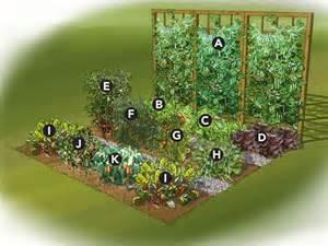 Gardens vegetables and summer on pinterest