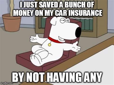 Car Insurance Meme - feeling meme ish family guy tv galleries paste