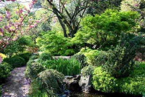 giardini botanici roma il giardino giapponese sapienza universit 224 di roma