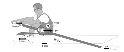 names of parts of a rowing boat using measurements in rowing rowing in motion