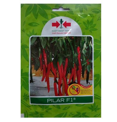 Jual Benih Cabe Merah Besar benih panah merah cabe besar pilar f1 1 500 biji jual