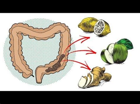 Http Tinyurl Detox Help by 1000 Ideas About Colon Cleansers On Colon