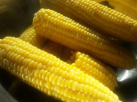 manfaat mengonsumsi jagung rebus  kesehatan