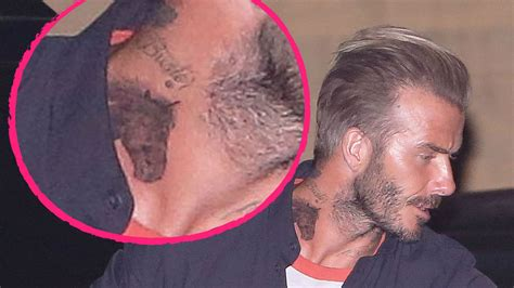 david beckham tattoo tochter tierisch das ist david beckhams neues pferde tattoo