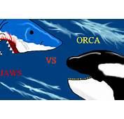 Orca Vs Jaws Movie