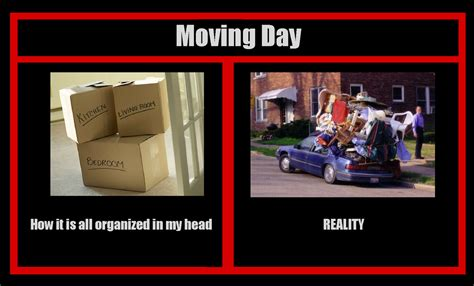 Moving Day Meme - the 5 stages of moving