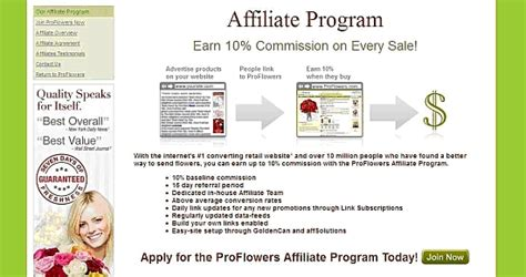 Affiliate Programs Website Templates Free Software And Affiliate Program Template