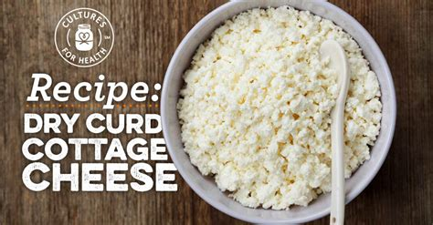 curd cottage cheese recipe cultures for health