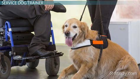 licensed dog trainer licensure  career