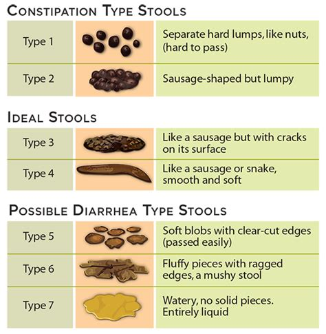 Bristol Stool Chart For by Bristol Stool Scale1 Kristalose Lactulose For