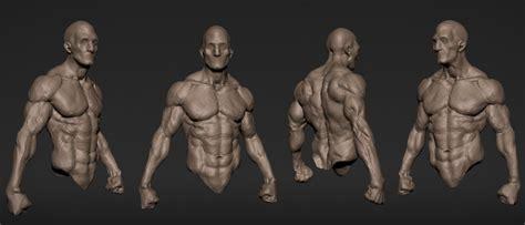 zbrush tutorial human body upper body speed sculpt youtube