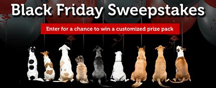 Black Friday Sweepstakes - black friday sweepstakes petmeds 174 pet health blog