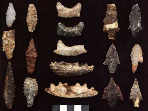 new year artifacts ancient seafarers tool up to 12 000 years