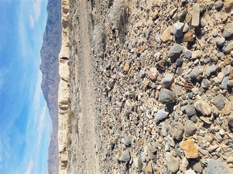 tule springs fossil beds tule springs fossil beds national monument las vegas nv
