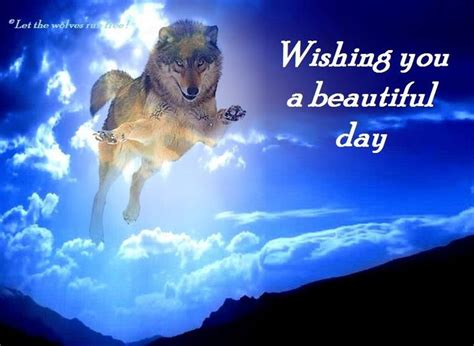 Day 6 A Scenic Detour by Wishing You A Beautiful Day Wolves Wolf