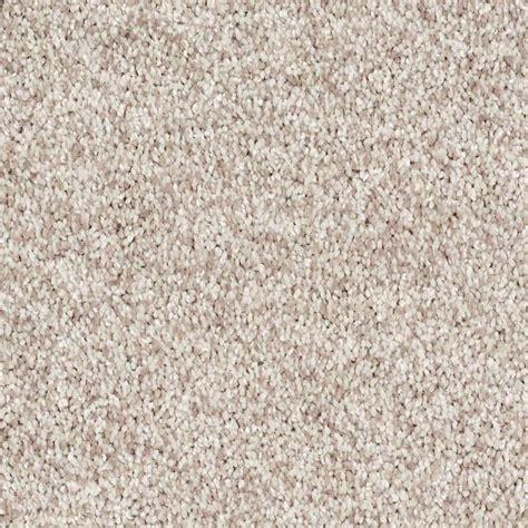 shaw floors carpet dazzle me texture discount flooring liquidators