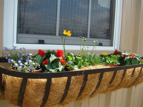 planters amazing home depot window boxes rectangular