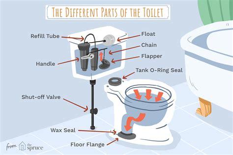 understanding  parts   toilet