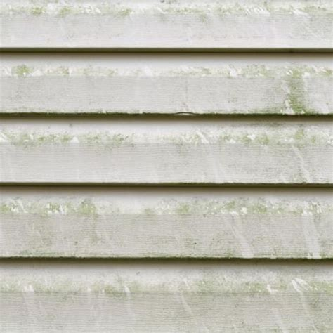 how to remove mold from house siding how to remove mold from vinyl siding vinyls oxygen bleach and vinyl siding