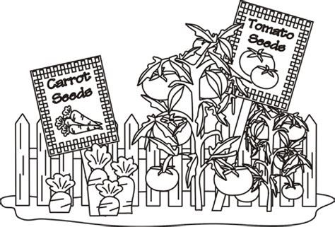 printable coloring pages garden vegetable garden coloring pages food pinterest