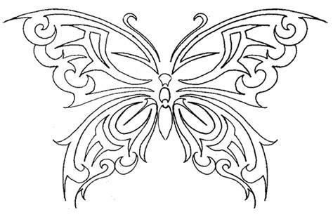 butterfly tattoo by justdbear on deviantart